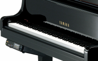 Yamaha DGB-1 KE3 PE:Polished Ebony (2)