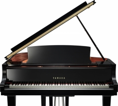 Yamaha C1X PE: Polished Ebony