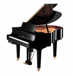 Yamaha DGB-1 KE3 PE:Polished Ebony